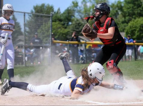 Baseball and Softball compete in District games