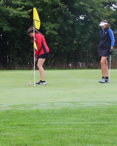 Sharks reach new heights at Shepherd Bluejay Invite