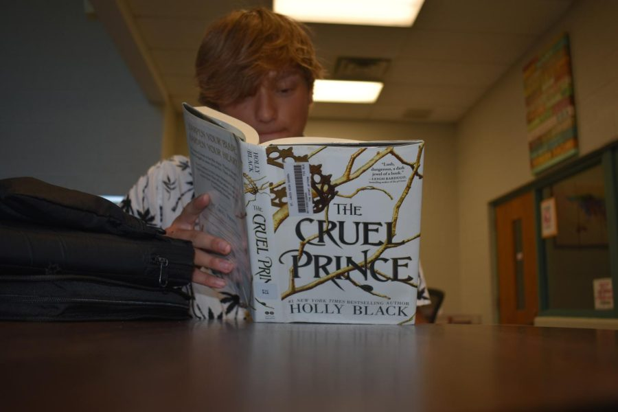 Student takes part of getting to know what is a great about the Cruel Prince.